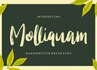 Molliquam - Handwritten Font