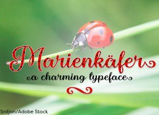 Marienkaefer Font
