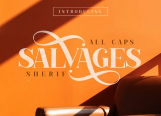 Salvages Font