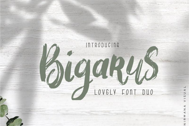 Bigarus Font Duo