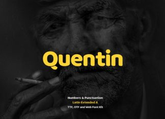 Quentin Pro Typeface + Webfonts