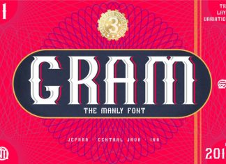 GRAM - New Display Font