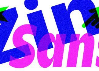 Zin Sans Font Family