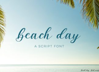 Beach Day Script Font