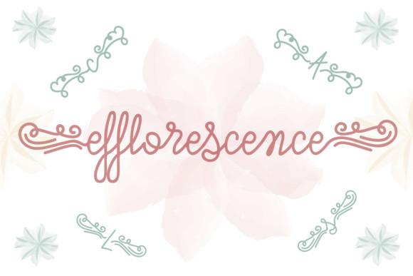 Efflorescence Font