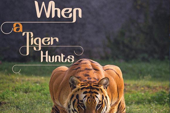The Jungle Font