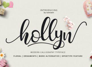 Hollyn + Extras Font
