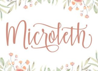 Microleth Font