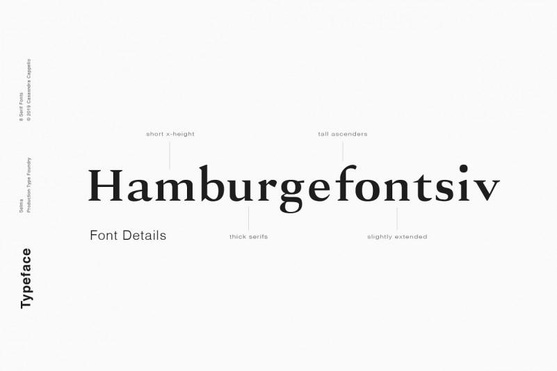 Selma - A Classy Serif Typeface Font