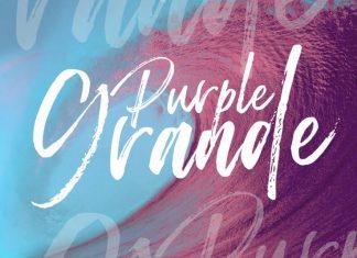 Purple Grande   Brush Script Font