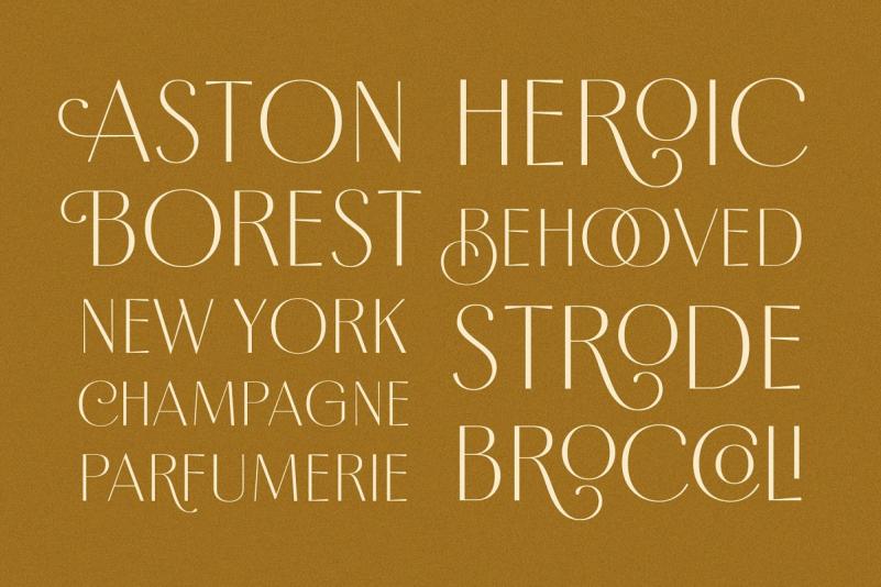 Borest Elegant Roman Font