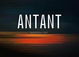 Antant Font
