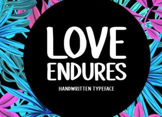 Love Endures Font