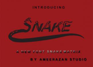 Metrix Snake Font