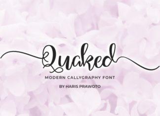 Quaked Font
