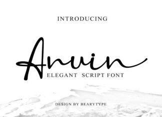 Anuin Font