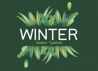 Winter Font