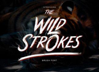Wild Strokes Font