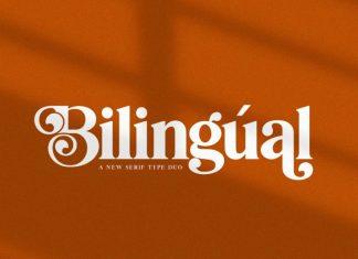 Bilingual Font